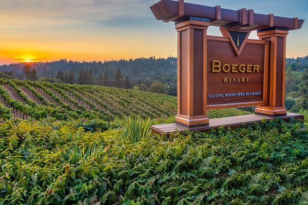 Boeger Winery 2020/21