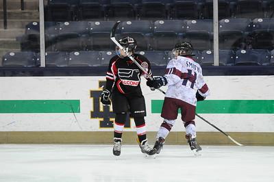 12u A2 Silver - Southern Illinois Ice Hawks