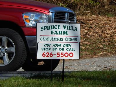 Spruce Villa