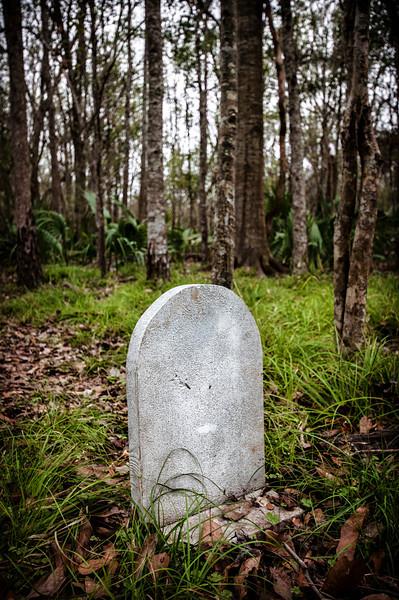 swamp grave.jpg