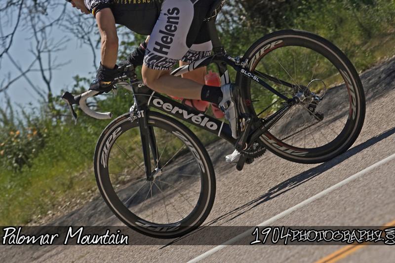 20090412 Palomar Mountain 219.jpg