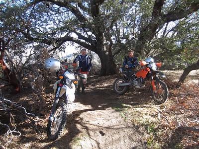 Sequoia NF Ride Dec.2013