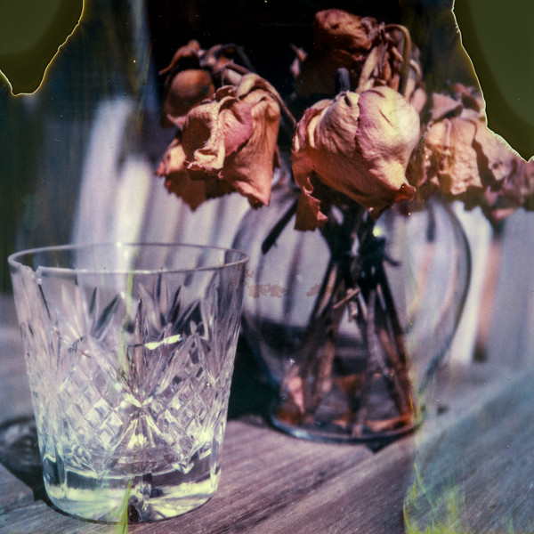 polaroid-glass-flowers014.jpg