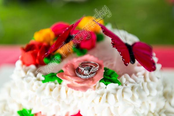 Smith Wedding Reception 7/19/2015