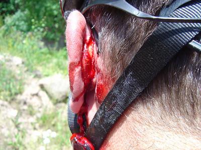 Rydy's Cut Ear