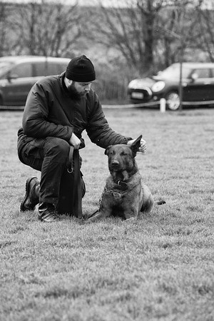 Surrey Police Dogs