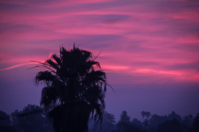 January 10 - Sunrise.jpg
