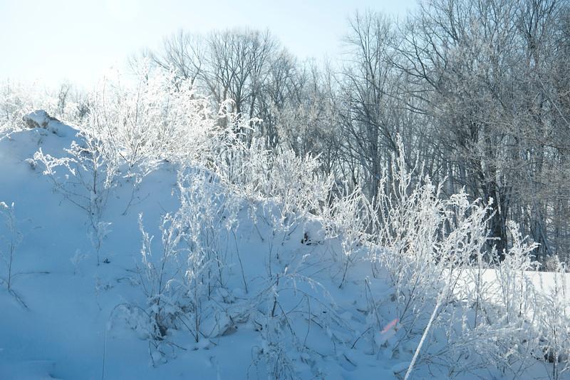 ARR by Penny Jesse-5187 Frosty Mountain.jpg