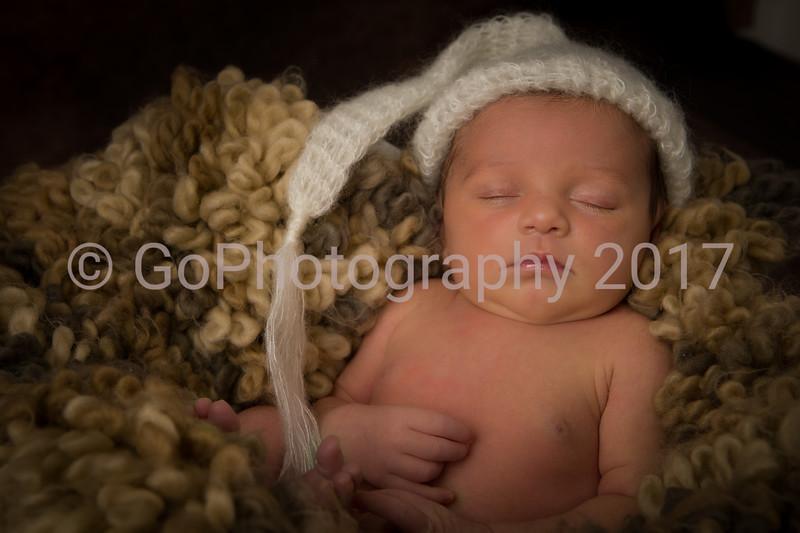 Rosie Newborn