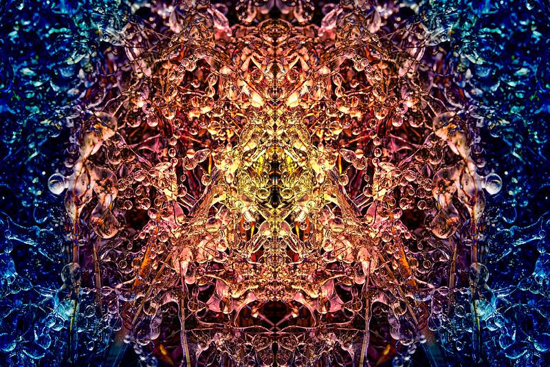 20201012-_DSC4637-Edit-Edit-mirror-1-4.jpg