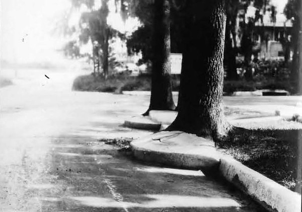 1928-Recently Widened Street.jpg