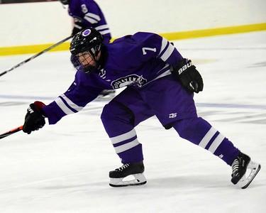 HS Sports - Allen Park Thanksgiving Tournament hockey semifinals