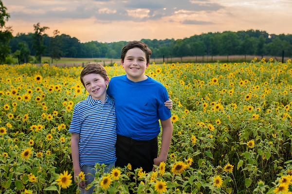 Blackmon Sunflowers