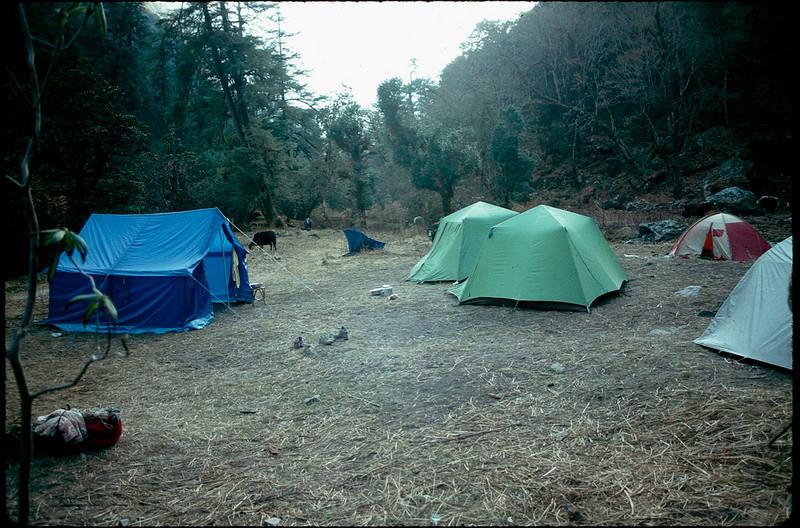 camp outside of Langtang village at 11,000'