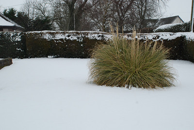 Dumfries & Galloway Snow.