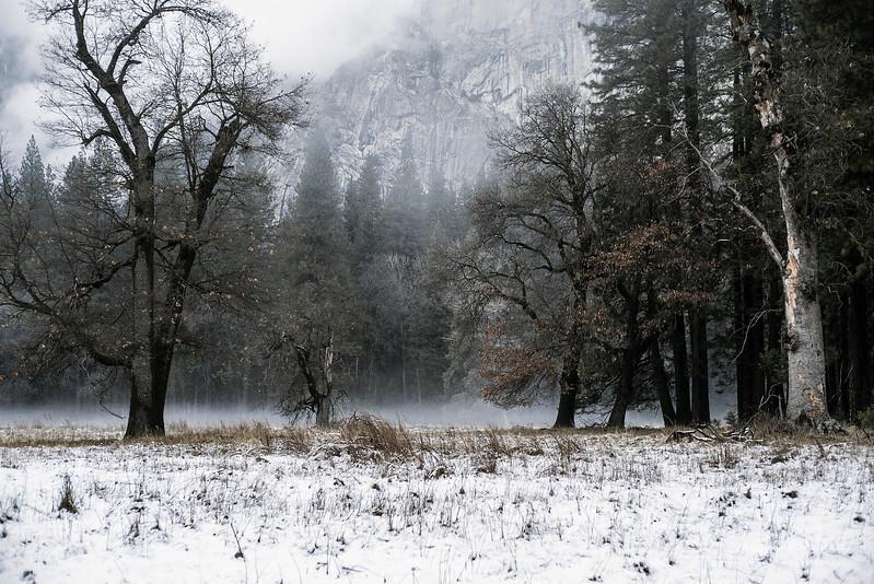 20141213_Yosemite_3020.jpg