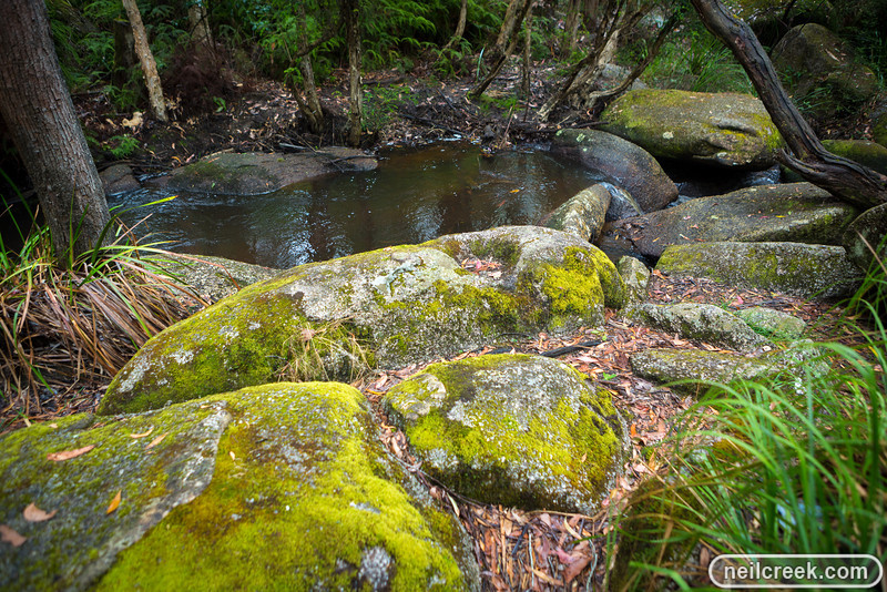 creek-131222-134.jpg