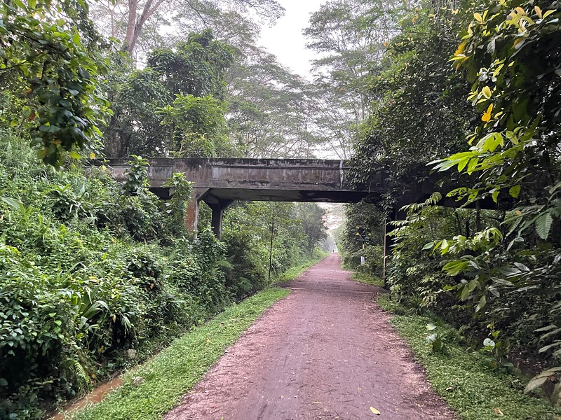 Rail Corridor Central