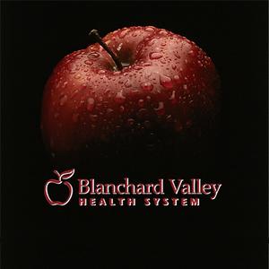 BVH (2008)