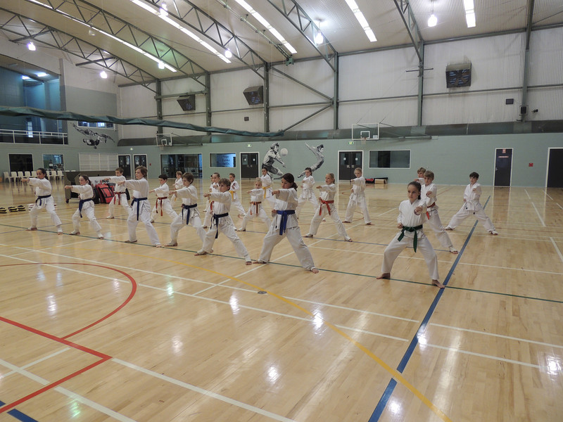 Combat Karate Grading and Course July 2013 024.JPG