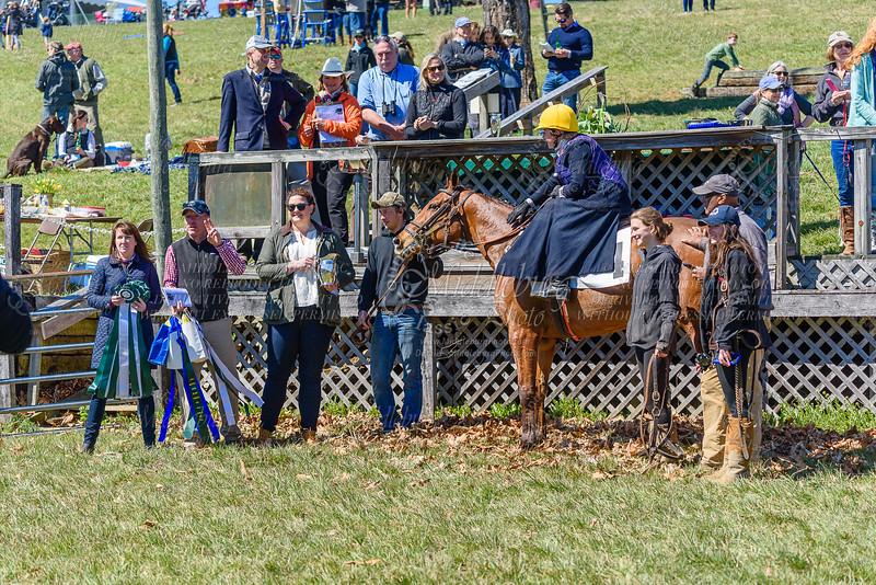 GSV Side Saddle Chase