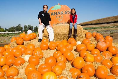 Pumpkin Patch at Tanaka Farms:  October 25, 2014