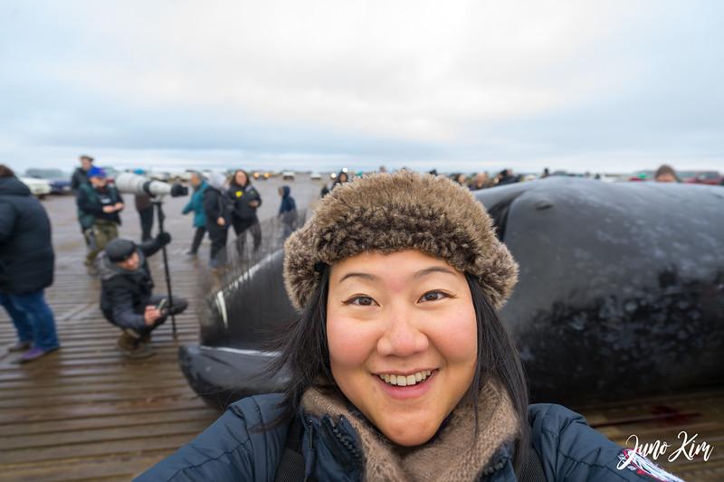 Utqiagvik Whaling-7063-Juno Kim.jpg