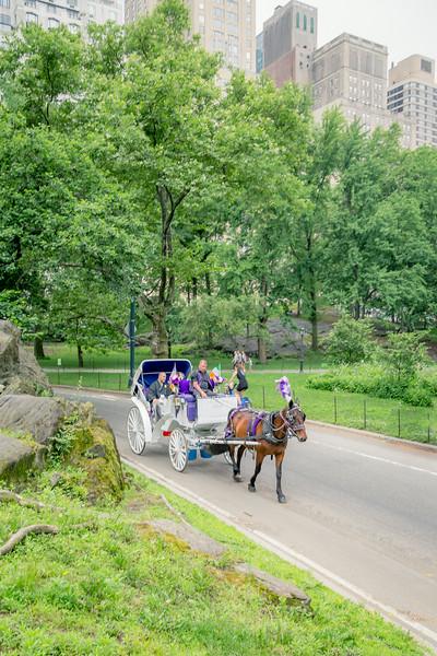 Keiko & Wilbert - Central Park-15.jpg