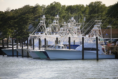 Virginia Beach Billfish Tournament Fleet