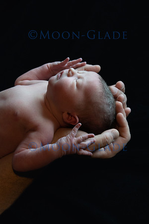 Baby Areya