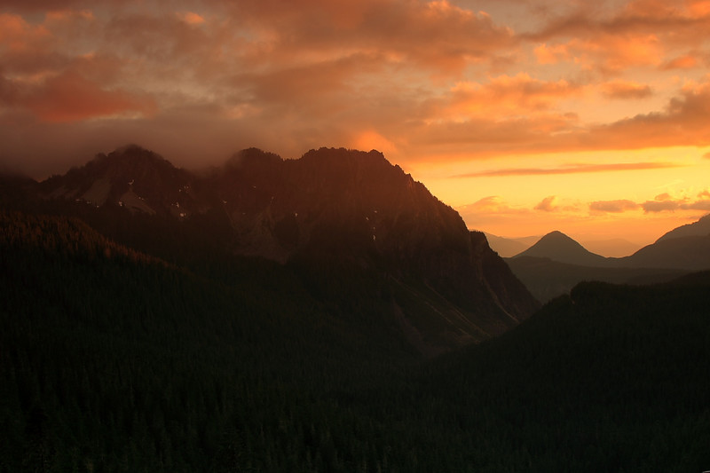 Mt. Rainier 66.JPG