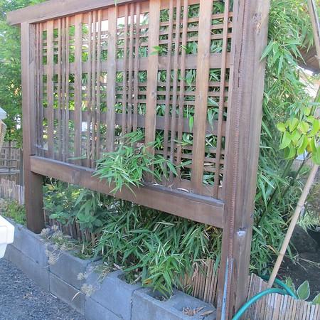 Japanese Garden Oregon