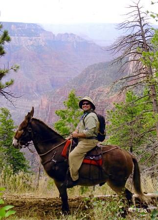 Grand Canyon - Mule Ride (AZ)