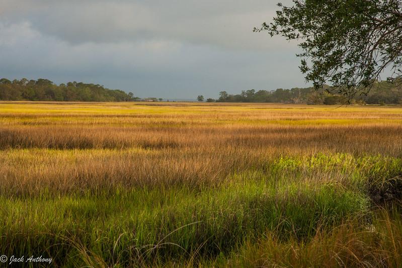 Marshes of Glynn, Glynn County, Ga.