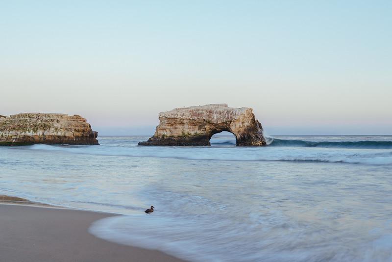 Natural Bridge Santa Cruz