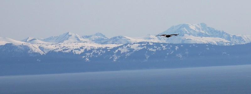 2008 Alaska Trip