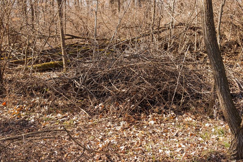 long term mulch pile