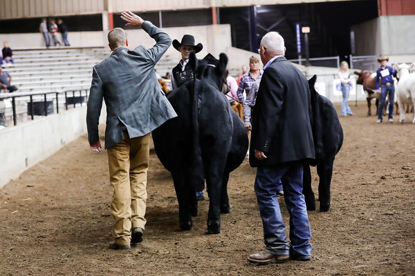 Supreme Cow/Calf Ring Shots