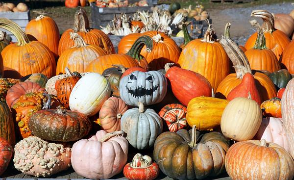 2015 Fall Field Trip to Staunton, VA