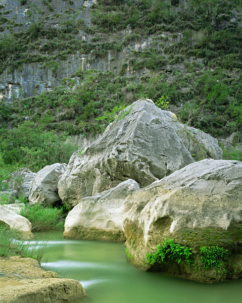 Tamaulipas, Mexico / Servilletta Canyon with stream pouring over boulder strewn, limestone spill ways with the canyon's sheer, Bromeliad, Bromeliad sp, covered wall. 1203V2