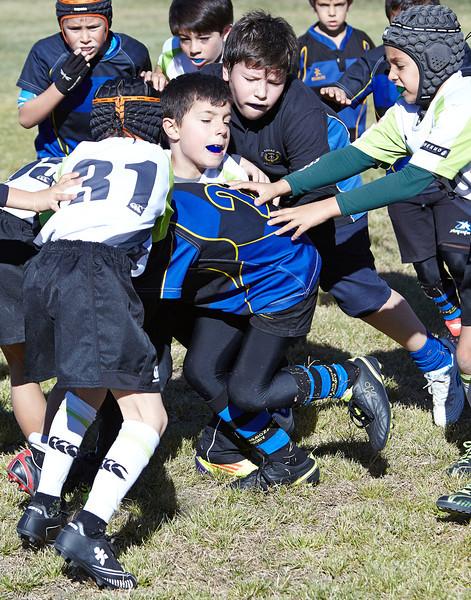 1036_09-Nov-13_RugbyOrcasitas.jpg