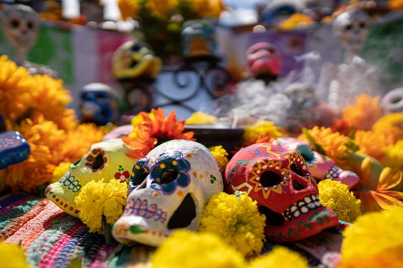 Dia de los muertos 2019-26.jpg