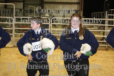 2009 Spring Branch Chicken Show