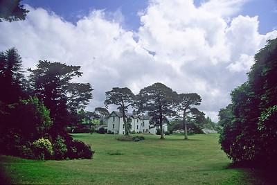 Irland - Derreen Gardens