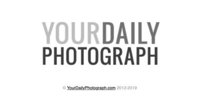 YourDailyPhotograph.com ~ Sacramento