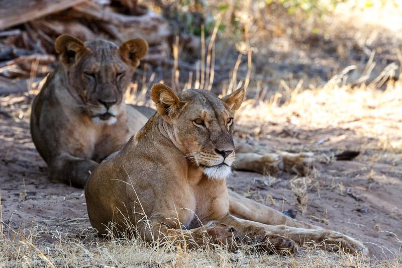 Kenya 2015-00380.jpg