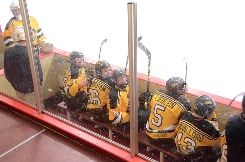 141004 Jr. Bruins vs. Boston Bulldogs-217.JPG