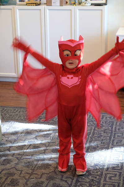 20171017 001 Kate dressed as Owlette from PJ Masks.JPG