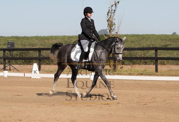 Rider 211