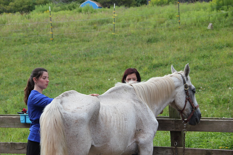 kars4kids_thezone_camp_girlsDivsion_activities_HorseBackRiding (24).JPG